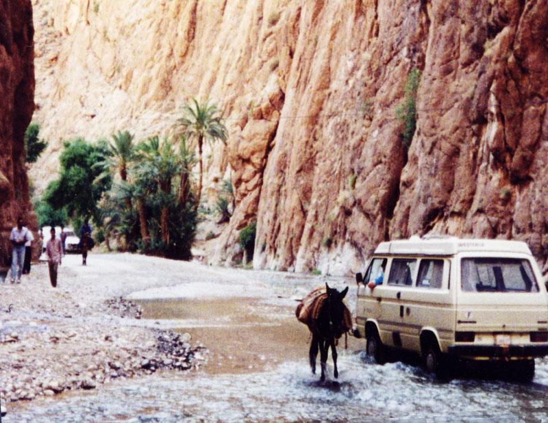 todra-gorge-2-jackasses-passing-morocco-1997_jpg